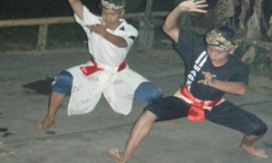 Fin demo Silat Pulut - Culture-Silat