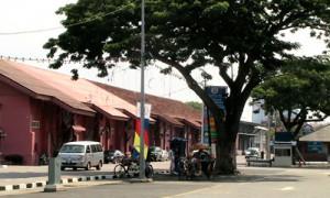 Melaka - Arbre emblême de la ville - Culture-Silat