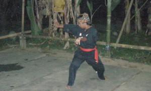 Bunga Merah Silat Fatani village - Culture-Silat