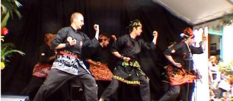 Journée Culturelle - 2007