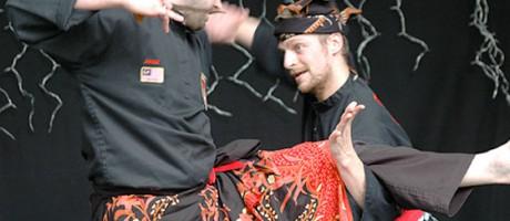 Journée Culturelle - 2009