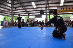 Compétition Silat Seni (8)