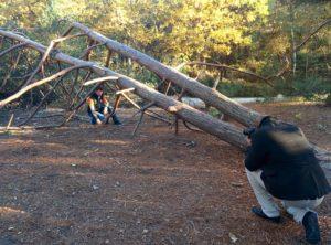 Culture Silat - Clip Silat - Repérages Fontainebleau 2015 (2)