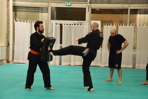 culture-silat-cours-de-pencak-silat-traditionnel-a-paris-novembre-2106-17