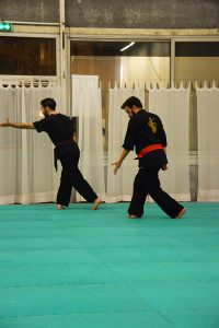culture-silat-cours-de-pencak-silat-traditionnel-a-paris-novembre-2106-25