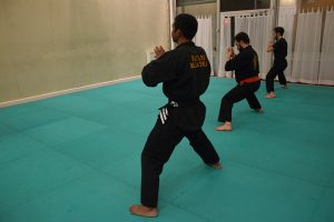 culture-silat-cours-de-pencak-silat-traditionnel-a-paris-novembre-2106-6