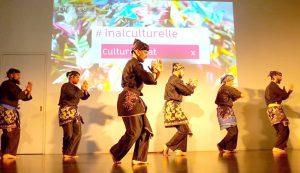 Culture Silat - Démo Silat Seni Gayung Fatani - Inalculturelle 2017 (10)