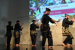 Culture Silat - Démo Silat Seni Gayung Fatani - Inalculturelle 2017 (9)