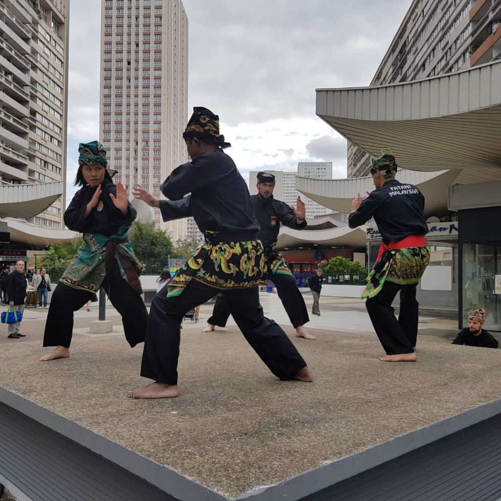 Culture Silat - Démo Silat Seni Gayung Fatani Malaysia - Festival Arts Olympiades 2019 (21)