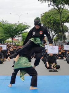 Culture Silat - Démo de Silat Fatani - Himpunan KCH 2018 (11)