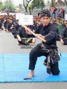 Culture Silat - Démo de Silat Fatani - Himpunan KCH 2018 (17)