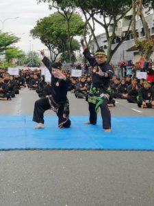 Culture Silat - Démo de Silat Fatani - Himpunan KCH 2018 (19)