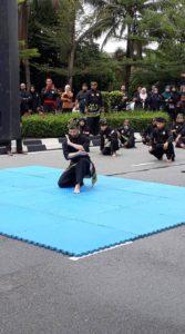 Culture Silat - Démo de Silat Fatani - Himpunan KCH 2018 (4)