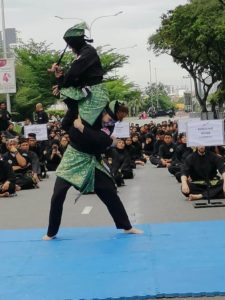 Culture Silat - Démo de Silat Fatani - Himpunan KCH 2018 (6)