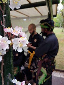 Culture Silat - Démonstration de Silat Seni Gayung Fatani - La Malaisie en Fête 2017 (48)