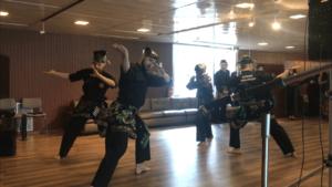 Culture Silat - Démo Silat - Délégation Permanente de la Malaisie à l'UNESCO - 2018 (21)