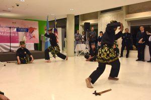 Culture Silat - Démo Silat Gayung Fatani - UNESCO 2017 (9)