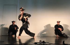 Culture Silat - Démo Silat Seni Gayung Fatani - Inalculturelle 2017 (5)