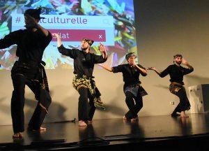 Culture Silat - Démo Silat Seni Gayung Fatani - Inalculturelle 2017 (8)