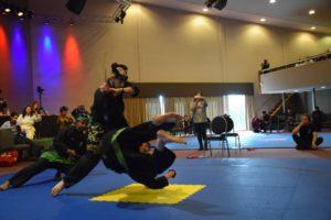 Culture Silat - International Pencak Silat Festival - Silat Fatani Roermond 2020 (8)