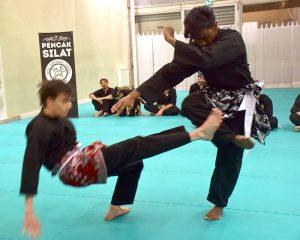 Culture Silat - Passage de grade 2015-2016 - Seni Gayung Fatani Malaysia (23)
