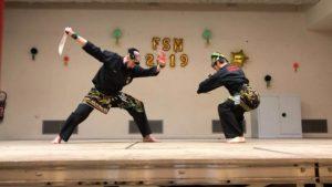 Culture Silat - Silat Seni Gayung Fatani - Festival Seni Malaysia 2019 (32)