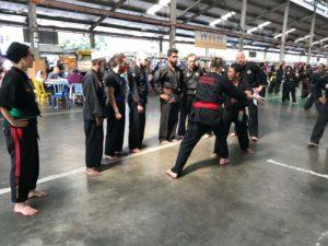 Culture Silat - Voyage et stage de Silat en Malaisie - 2018 (7)