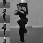 Pencak Silat - Décomposition des mouvements d'un Jurus Silat Fatani