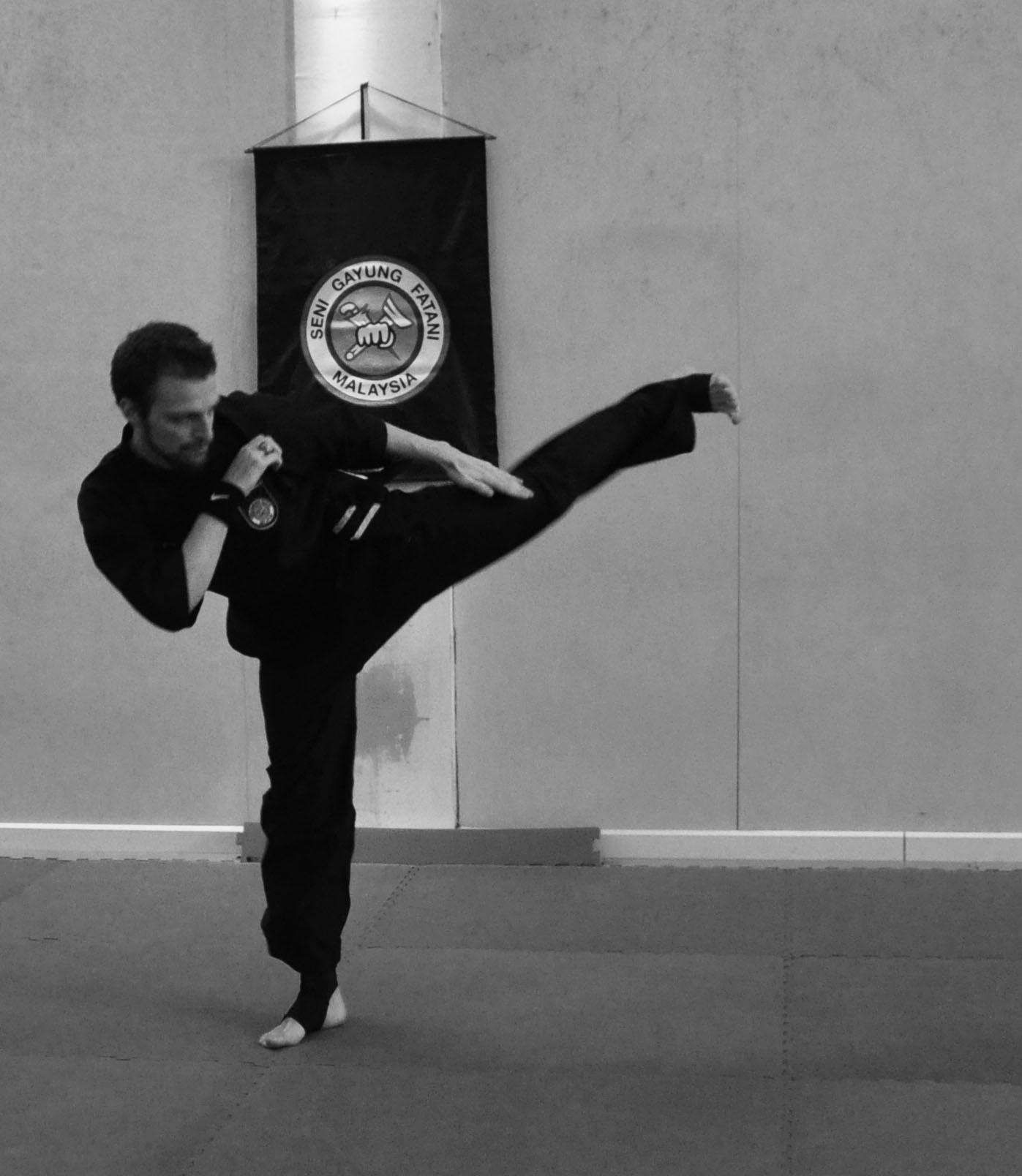 Pencak Silat - Side Kick