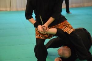 Stage de Pencak Silat traditionnel - Technique Audran et Jérôme