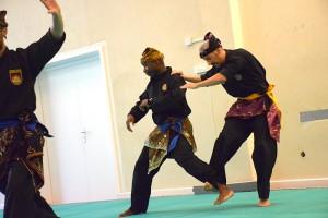 Arnaud et Michel pendant les techniques - Démo Maison du Taiji 2015