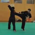 Pencak SIlat - Esquive d'un side kick