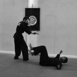 Pencak Silat - Projection au sol