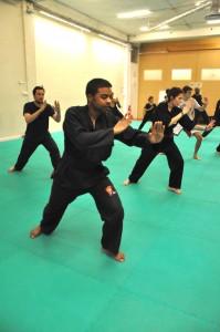 Cours de Pencak Silat - Seni Gayung Fatani - Exercices collectifs