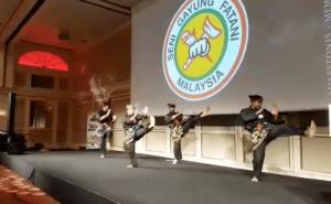 Demo Silat Seni Gayung Fatani - Malaysian Club Deutschland - 2017 (2)
