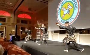 Demo Silat Seni Gayung Fatani - Malaysian Club Deutschland - 2017 (3)