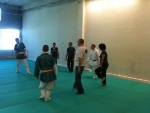 Taekkyon - L'ancêtre des arts martiaux coréens