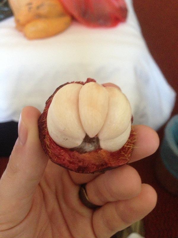 Carnet de stage Silat Fatani 2013 - Fruit d'Asie du Sud Est