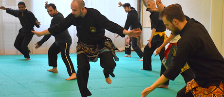 Nos stages de Pencak Silat en France