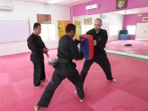 Exercices de coups de poings, série 1