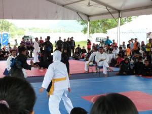 Silat Fatani - Olahraga 2015 (16)