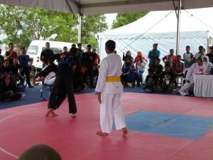 Silat Fatani - Olahraga 2015 (18)