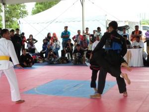 Silat Fatani - Olahraga 2015 (21)