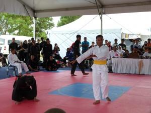 Silat Fatani - Olahraga 2015 (22)
