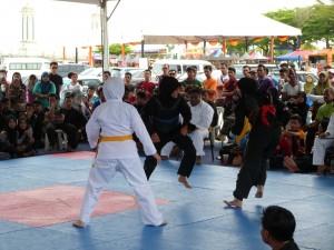 Silat Fatani - Olahraga 2015 (26)