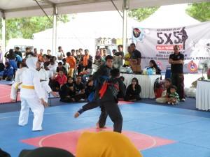 Silat Fatani - Olahraga 2015 (5)
