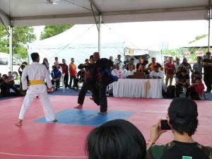 Silat Fatani - Olahraga 2015 (8)
