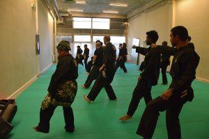Stage Pencak Silat - Seni Gayung Fatani - 22012017 - Session n°1 (10)