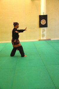Stage Pencak Silat - Seni Gayung Fatani - 22012017 - Session n°1 (13)
