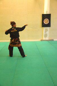 Stage Pencak Silat - Seni Gayung Fatani - 22012017 - Session n°1 (14)